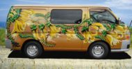 Dans Kowhai self contained campervan