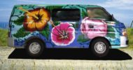 Happy Hibiscus Self Contained Campervan