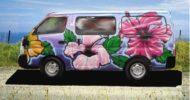 Hibiscus 2 Campervan