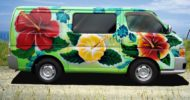 Hibiscus Summer self contained campervan