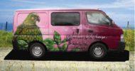 Pink Woodpigeon Campervan