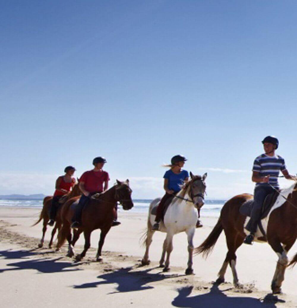 Horse riding on Pakiri Beach