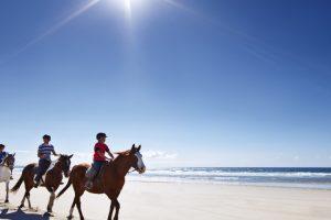Group enjoying horse riding at Pakiri Beach just north of Auckland