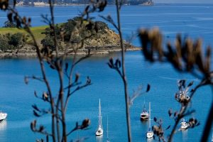 cb-visit-discover-top10-auckland-4-waiheke_small