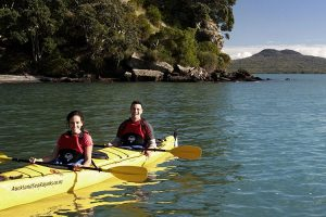 Couple kayaking to Rangitoto Island in Auckland City